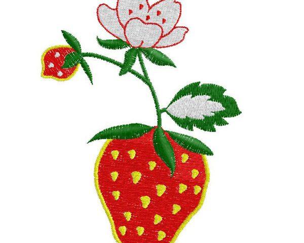 Embroidery Design 054